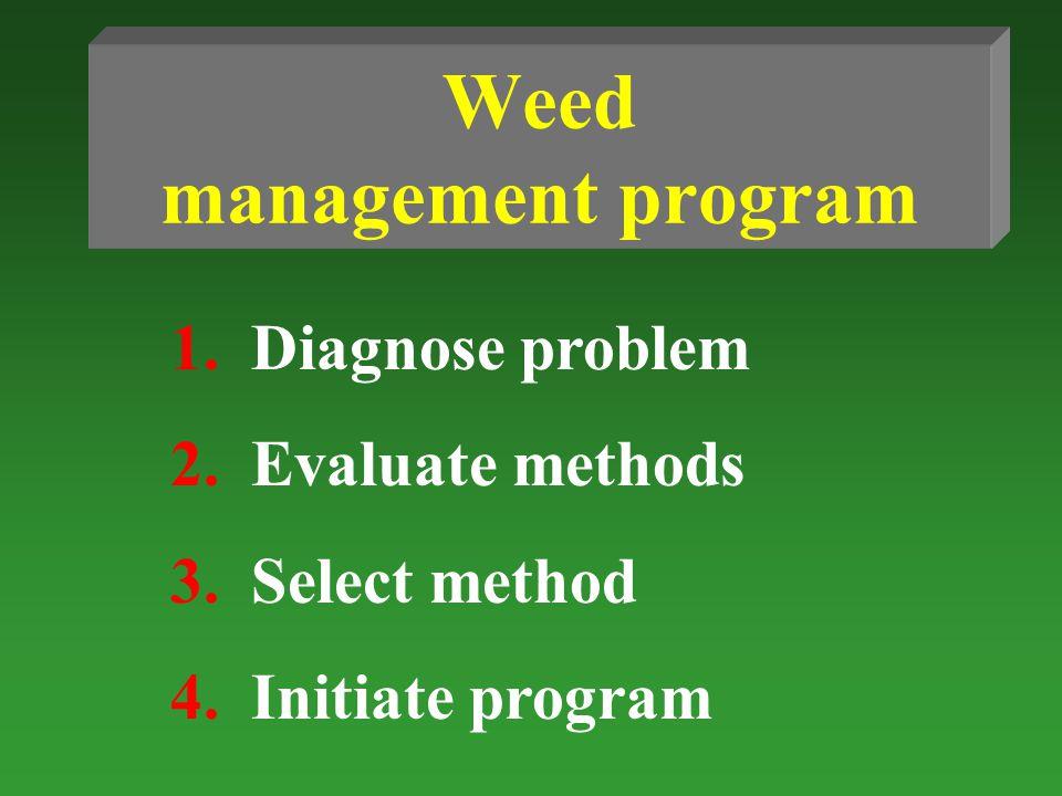 Weed management program 1.Diagnose problem 2.Evaluate methods 3.Select method 4.Initiate program