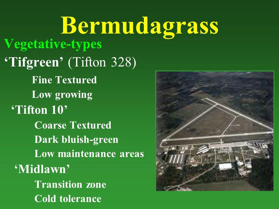 Bermudagrass Vegetative-types 'Tifgreen' (Tifton 328) Fine Textured Low growing 'Tifton 10' Coarse Textured Dark bluish-green Low maintenance areas 'Midlawn' Transition zone Cold tolerance