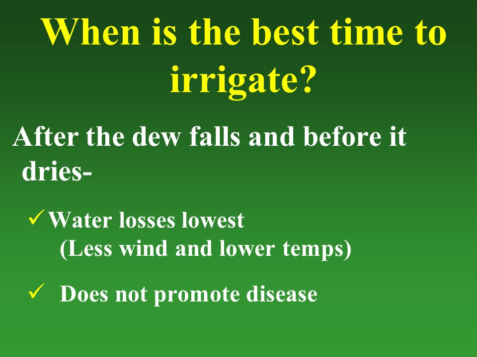 When is the best time to irrigate.