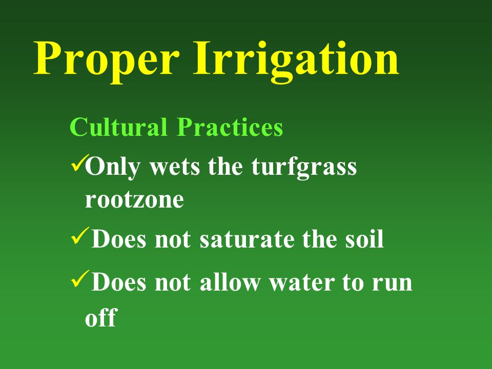 Proper Irrigation Cultural Practices Only wets the turfgrass rootzone Does not saturate the soil Does not allow water to run off
