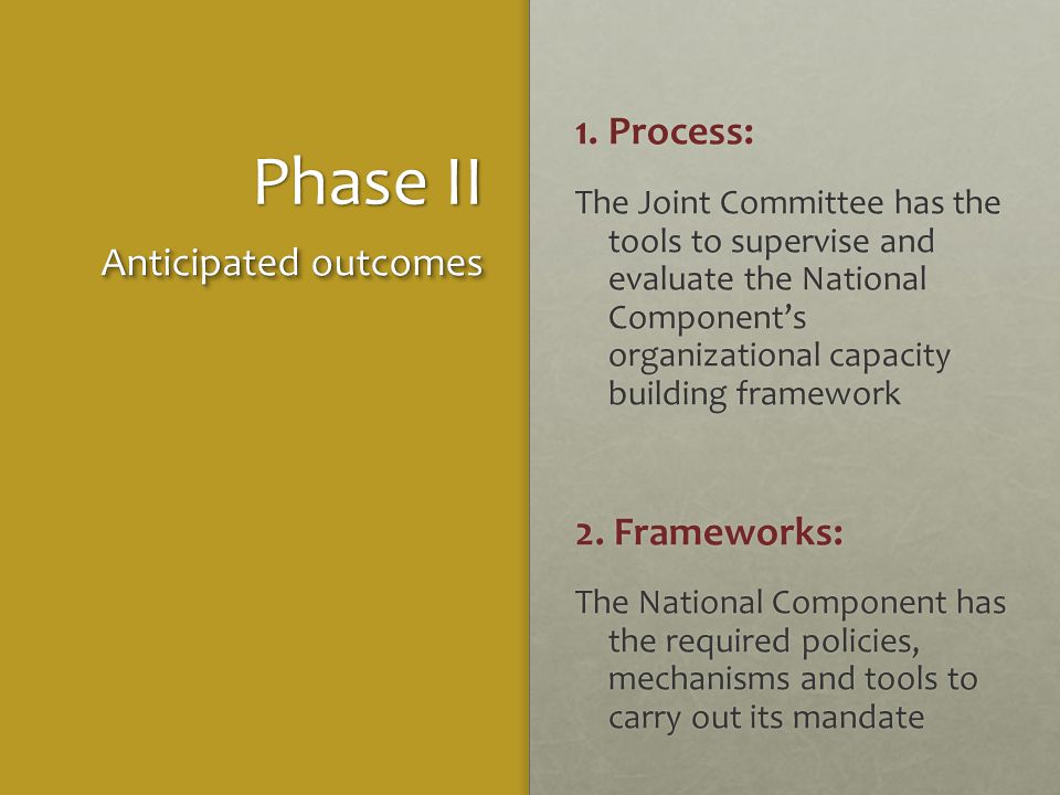 Phase II 1. Process: The Joint Committee has the tools to supervise and evaluate the National Component's organizational capacity building framework 2