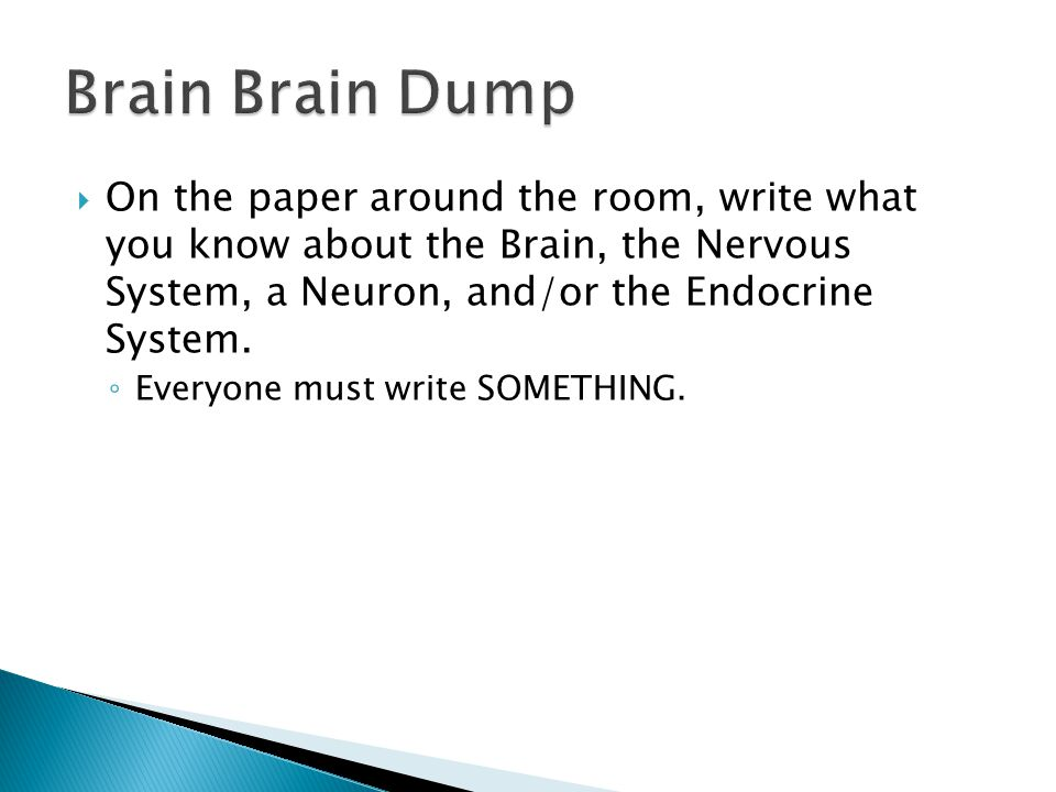  On the paper around the room, write what you know about the Brain, the Nervous System, a Neuron, and/or the Endocrine System. ◦ Everyone must write