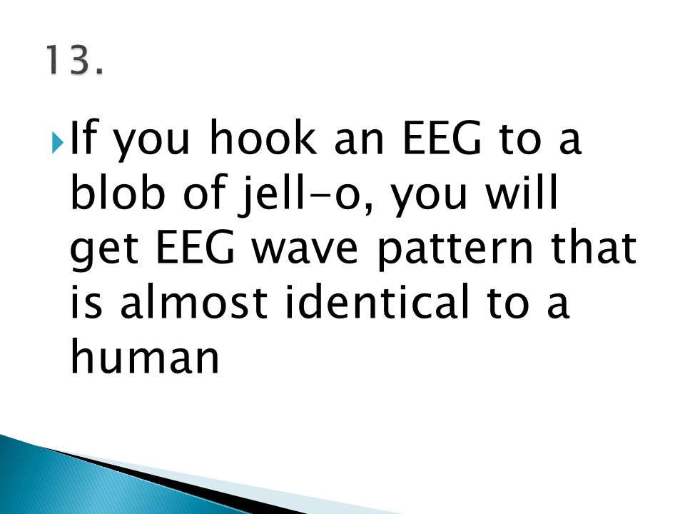  If you hook an EEG to a blob of jell-o, you will get EEG wave pattern that is almost identical to a human