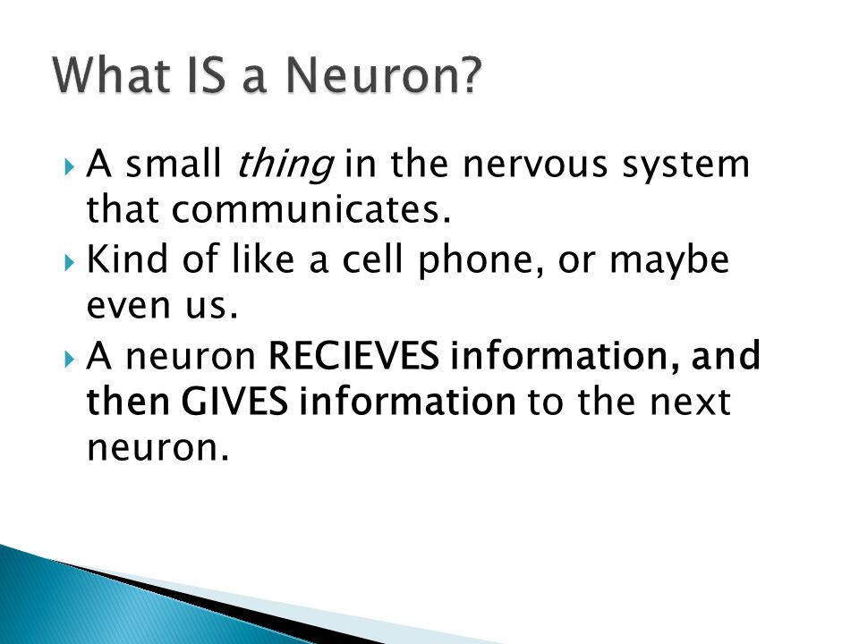  A small thing in the nervous system that communicates.  Kind of like a cell phone, or maybe even us.  A neuron RECIEVES information, and then GIVE