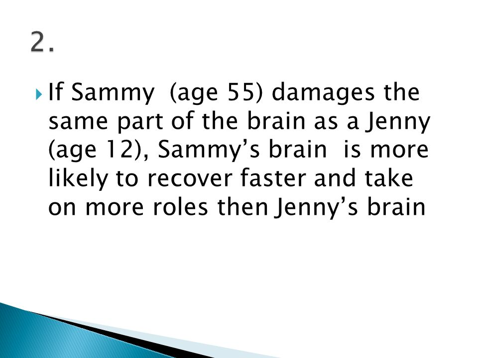  If Sammy (age 55) damages the same part of the brain as a Jenny (age 12), Sammy's brain is more likely to recover faster and take on more roles then