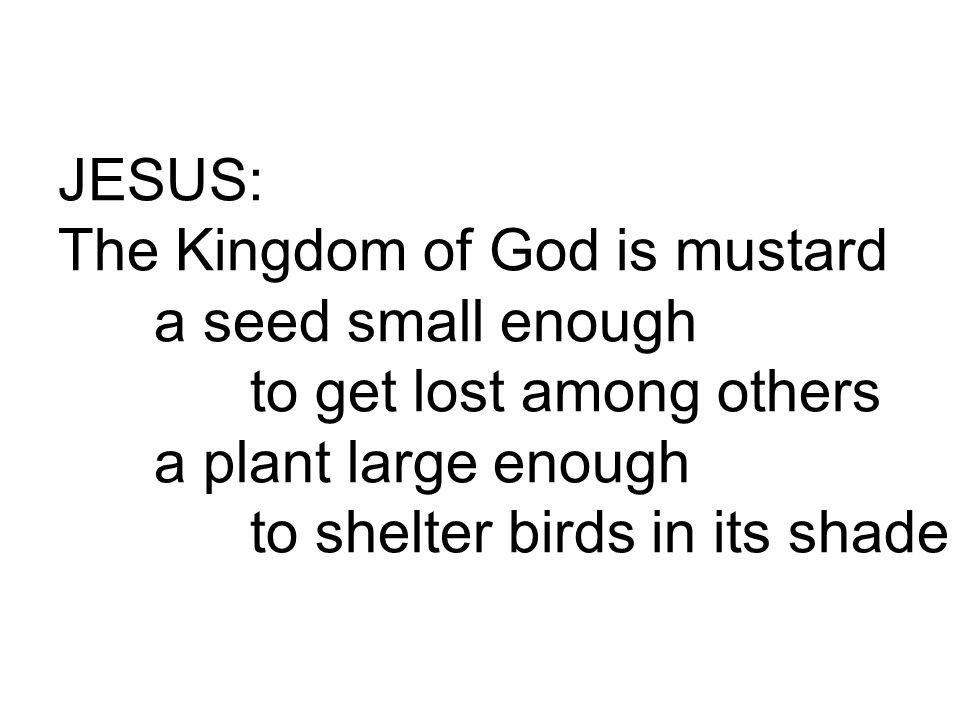 JESUS: The Kingdom of God is mustard a seed small enough to get lost among others a plant large enough to shelter birds in its shade