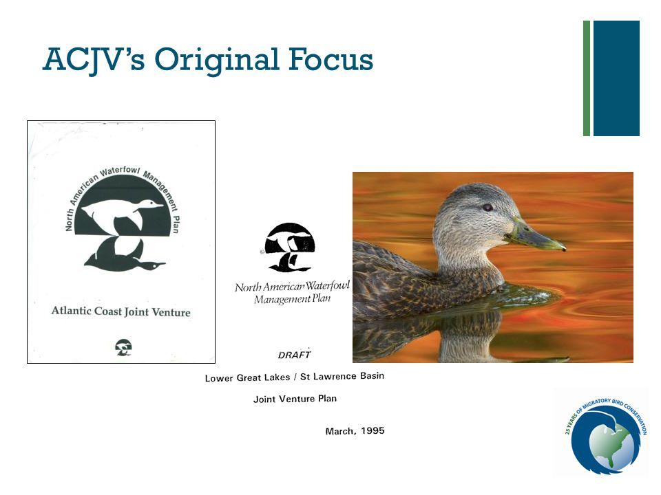 + ACJV's Original Focus