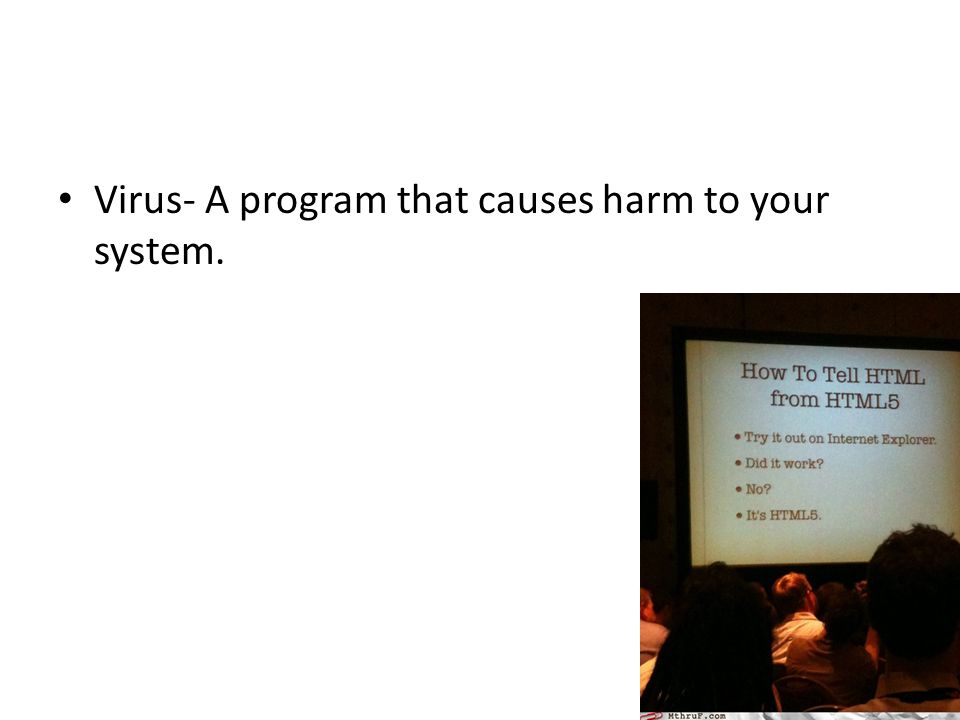 Virus- A program that causes harm to your system.