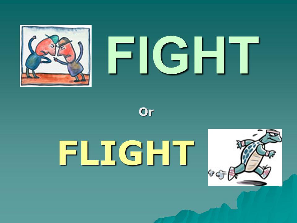 FIGHT FIGHT Or FLIGHT FLIGHT