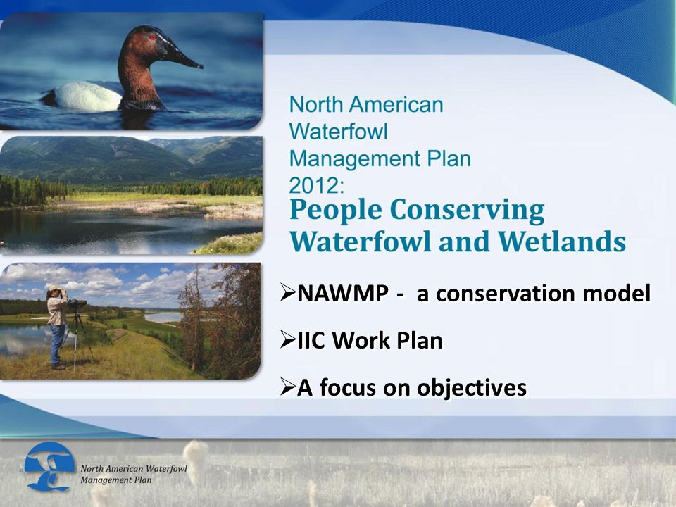 Continental waterfowl users/supporters Waterfowl Habitat Continental waterfowl populations Down—scaled Rolled-up Develop, revise or reaffirm NAWMP objectives Down—scaled