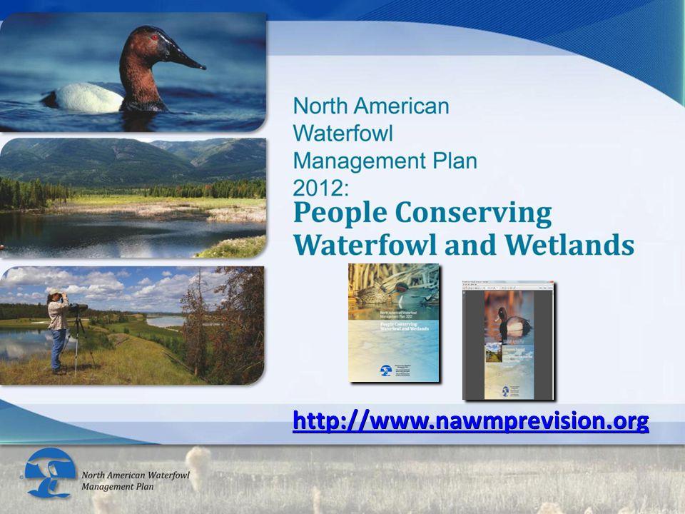 http://www.nawmprevision.org