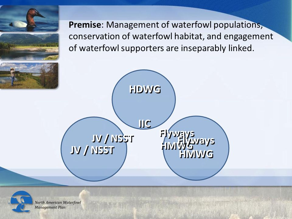 Premise: Management of waterfowl populations, conservation of waterfowl habitat, and engagement of waterfowl supporters are inseparably linked. Flyway