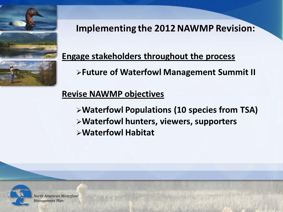 Implementing the 2012 NAWMP Revision: Engage stakeholders throughout the process  Future of Waterfowl Management Summit II Revise NAWMP objectives 