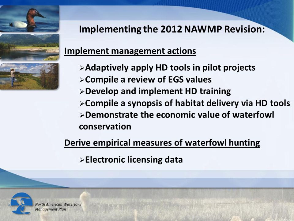 Implementing the 2012 NAWMP Revision: Implement management actions  Adaptively apply HD tools in pilot projects  Compile a review of EGS values  Develop and implement HD training  Compile a synopsis of habitat delivery via HD tools  Demonstrate the economic value of waterfowl conservation Derive empirical measures of waterfowl hunting  Electronic licensing data