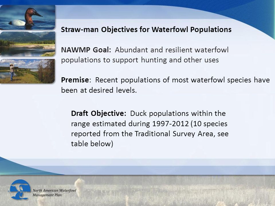 Draft Objective: Duck populations within the range estimated during 1997-2012 (10 species reported from the Traditional Survey Area, see table below)