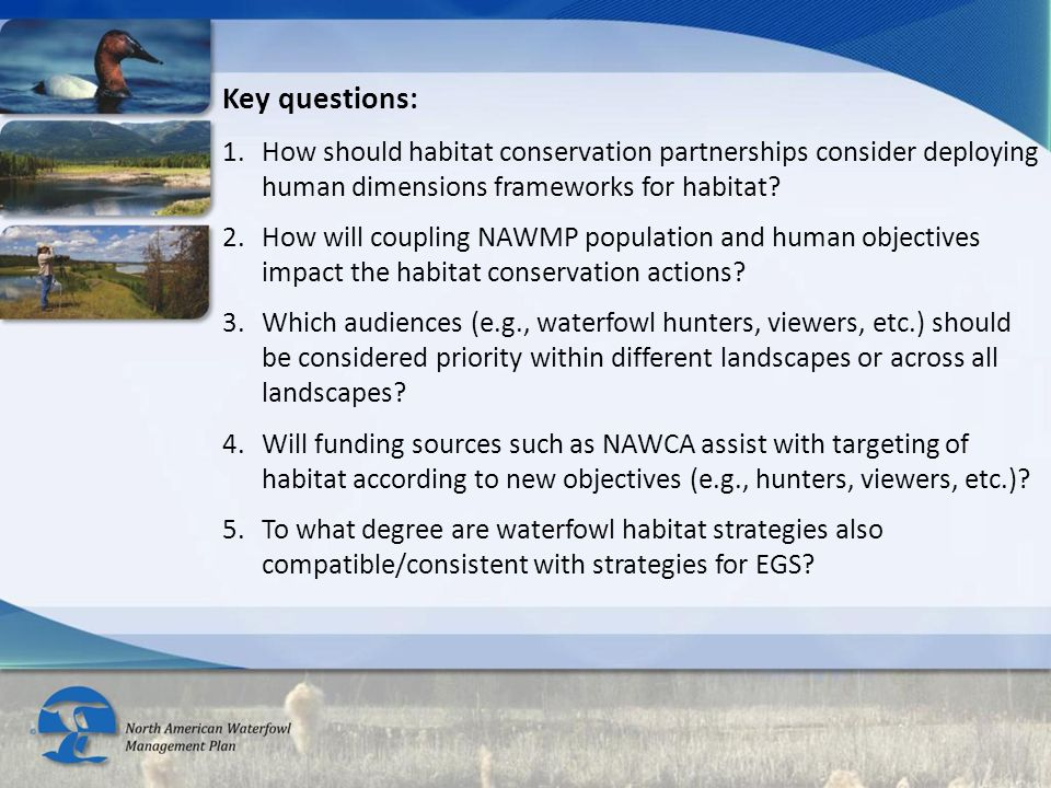 Key questions: 1.How should habitat conservation partnerships consider deploying human dimensions frameworks for habitat? 2.How will coupling NAWMP po