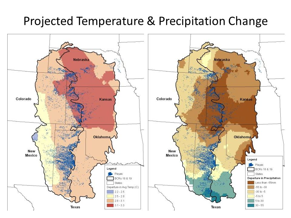 Projected Temperature & Precipitation Change