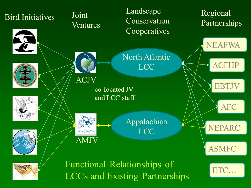 ACJV AMJV North Atlantic LCC Appalachian LCC ACFHP EBTJV NEPARC AFC NEAFWA ASMFC Bird Initiatives Joint Ventures Landscape Conservation Cooperatives Regional Partnerships ETC… Functional Relationships of LCCs and Existing Partnerships co-located JV and LCC staff