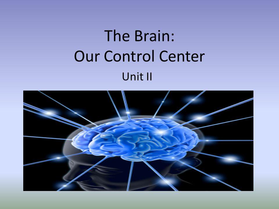 The Brain: Our Control Center Unit II