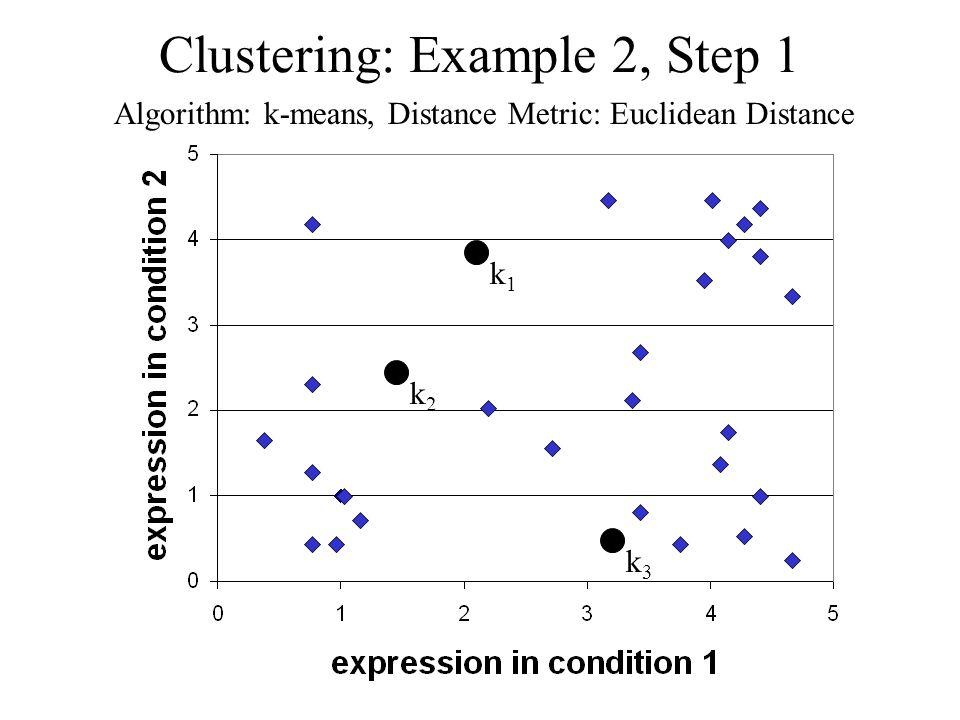 Clustering: Example 2, Step 1 Algorithm: k-means, Distance Metric: Euclidean Distance k1k1 k2k2 k3k3