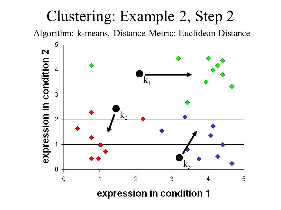 Clustering: Example 2, Step 2 Algorithm: k-means, Distance Metric: Euclidean Distance k1k1 k2k2 k3k3