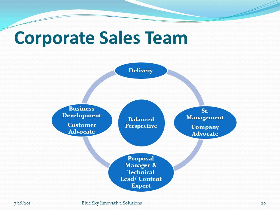 Corporate Sales Team Balanced Perspective Delivery Sr. Management Company Advocate Proposal Manager & Technical Lead/ Content Expert Business Developm
