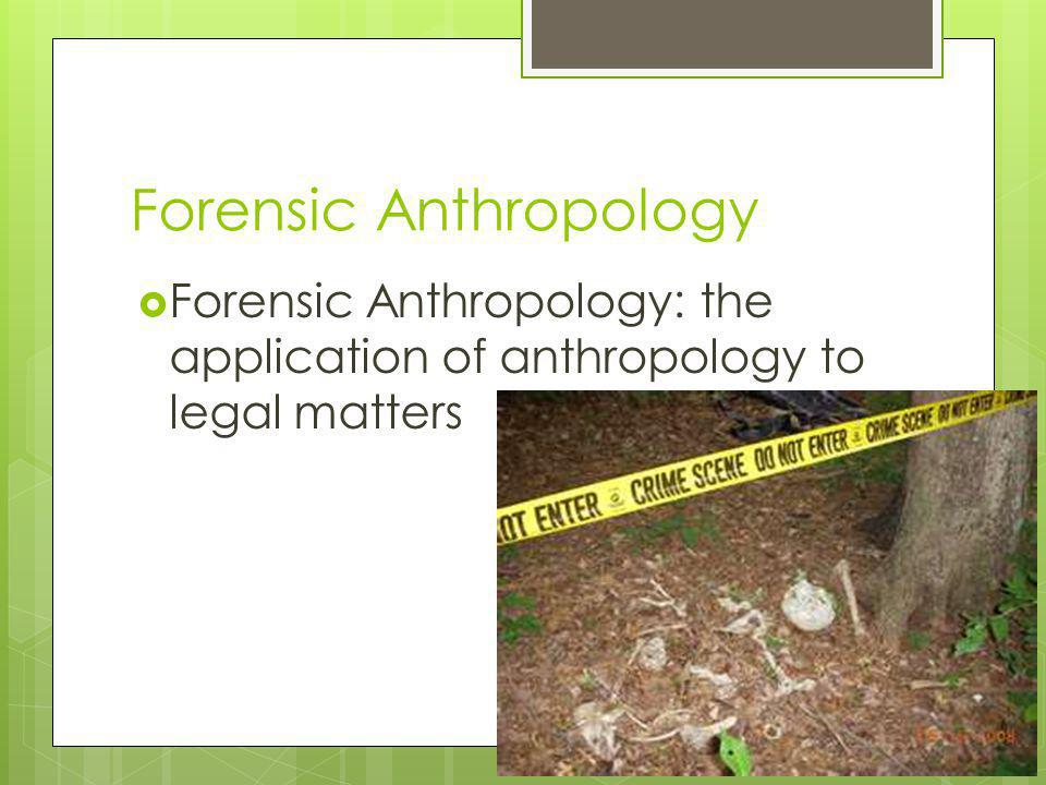 What Does a Forensic Anthropologist Do.
