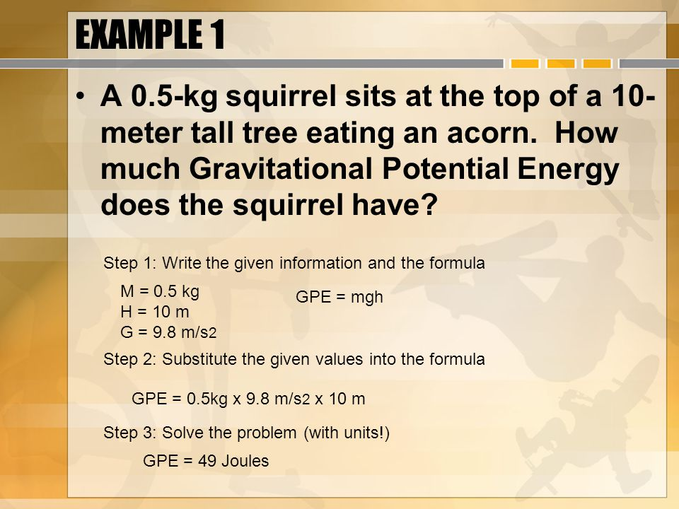 EXAMPLE 1 A 0.5-kg squirrel sits at the top of a 10- meter tall tree eating an acorn.