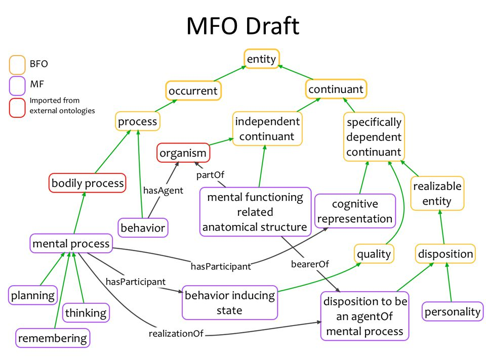 MFO Draft