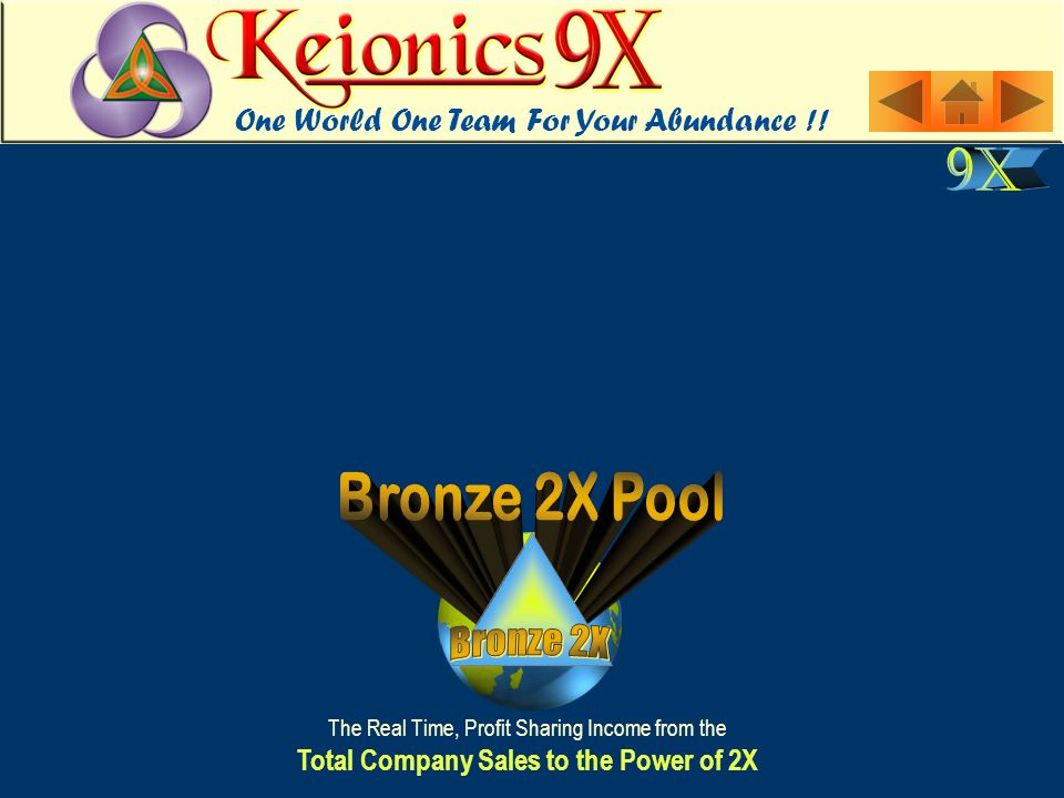 The Real Time, Profit Sharing Income from the Total Company Sales to the Power of 2X