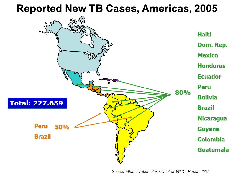 Percentage of National TB Programs (NTPs) That Manage MDR-TB Patients as Part of Their Routine Activities, by WHO Region, 2005 Source: Global Tuberculosis Control.