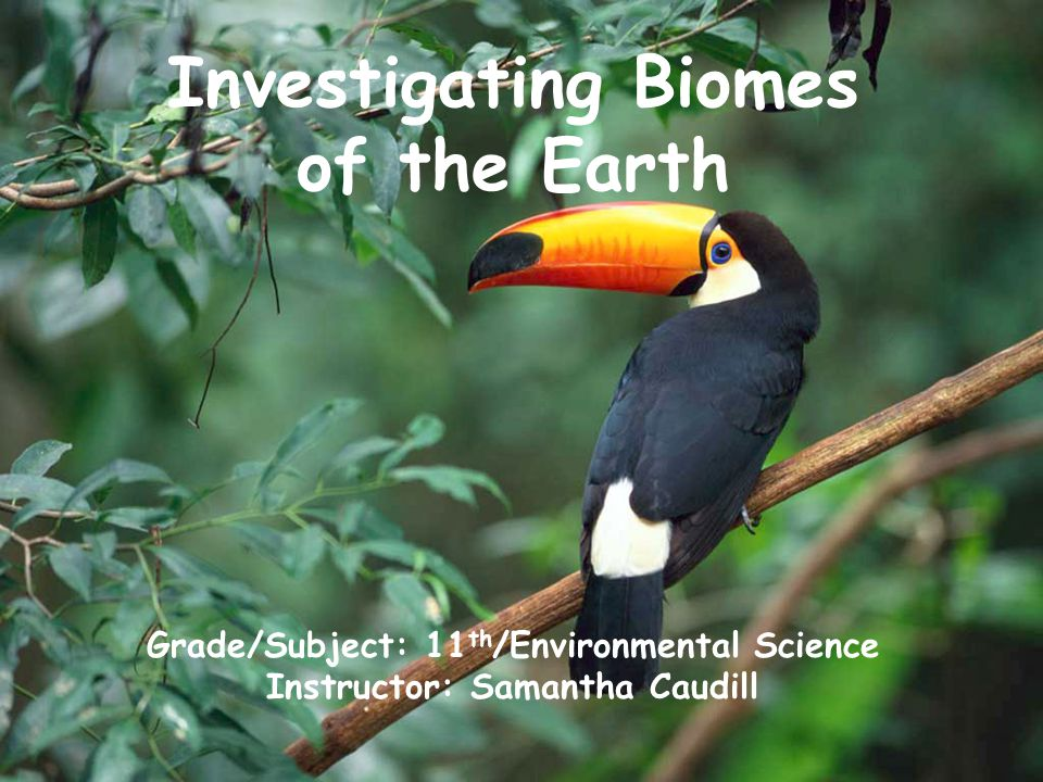 Investigating Biomes of the Earth Grade/Subject: 11 th /Environmental Science Instructor: Samantha Caudill