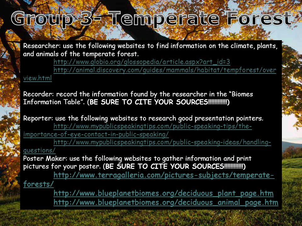 Researcher: use the following websites to find information on the climate, plants, and animals of the rainforest.