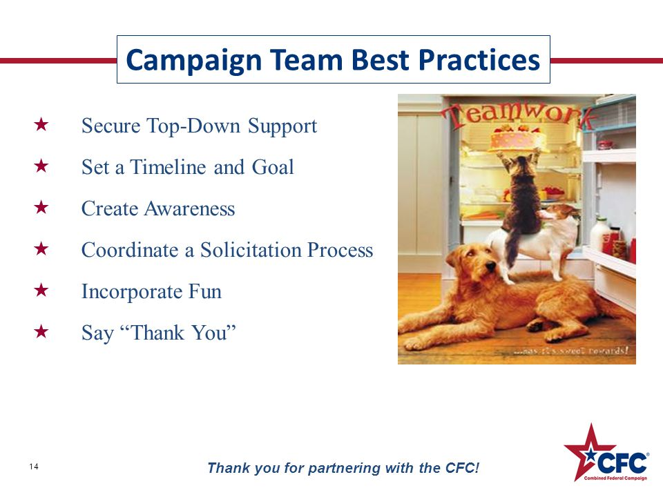 Campaign Team Best Practices 14 Thank you for partnering with the CFC!  Secure Top-Down Support  Set a Timeline and Goal  Create Awareness  Coordi