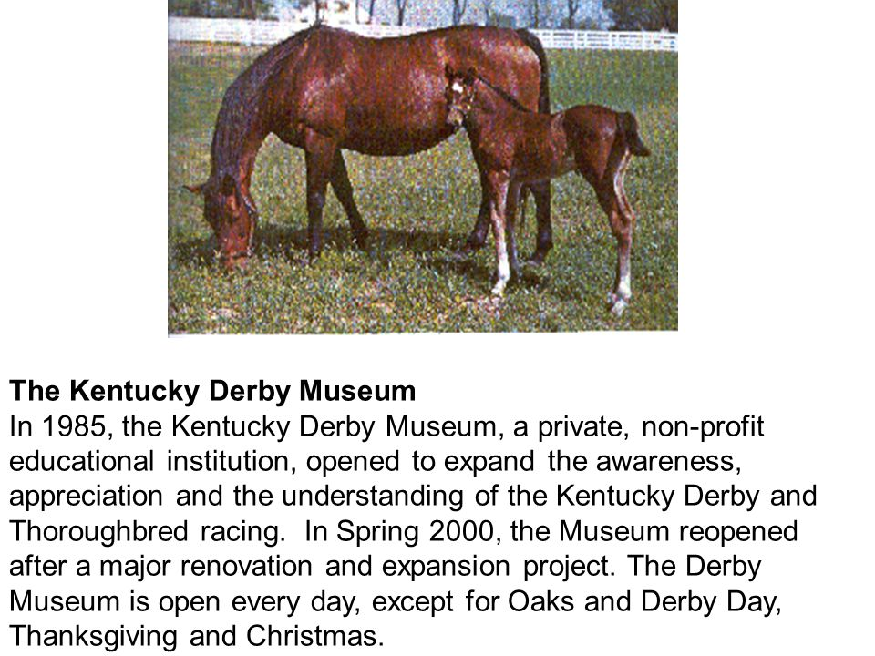 The Kentucky Derby Museum In 1985, the Kentucky Derby Museum, a private, non-profit educational institution, opened to expand the awareness, appreciation and the understanding of the Kentucky Derby and Thoroughbred racing.