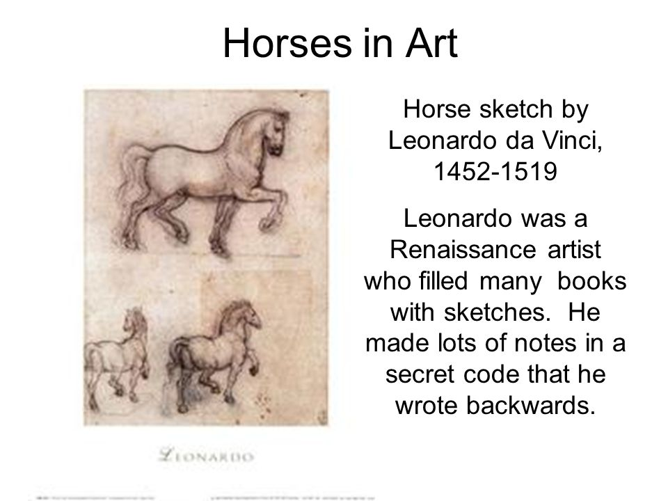 Horses in Art Horse sketch by Leonardo da Vinci, 1452-1519 Leonardo was a Renaissance artist who filled many books with sketches.