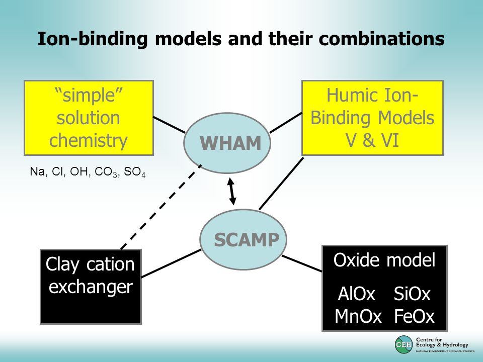 Ion-binding models and their combinations simple solution chemistry Oxide model AlOx SiOx MnOx FeOx Clay cation exchanger Humic Ion- Binding Models V & VI WHAM SCAMP Na, Cl, OH, CO 3, SO 4