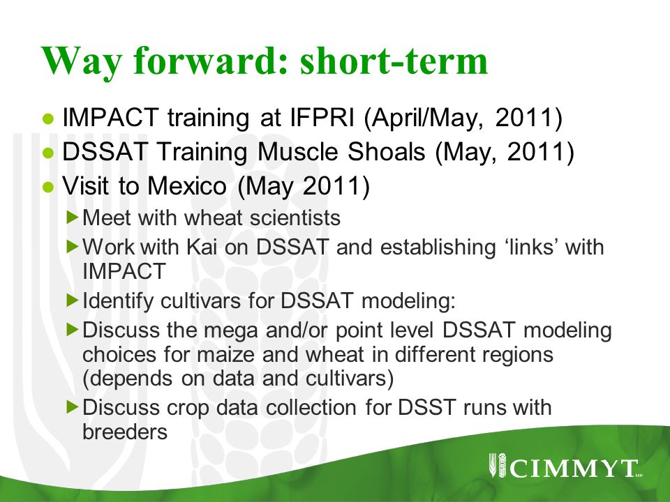 Way forward: short-term ● IMPACT training at IFPRI (April/May, 2011) ● DSSAT Training Muscle Shoals (May, 2011) ● Visit to Mexico (May 2011)  Meet wi