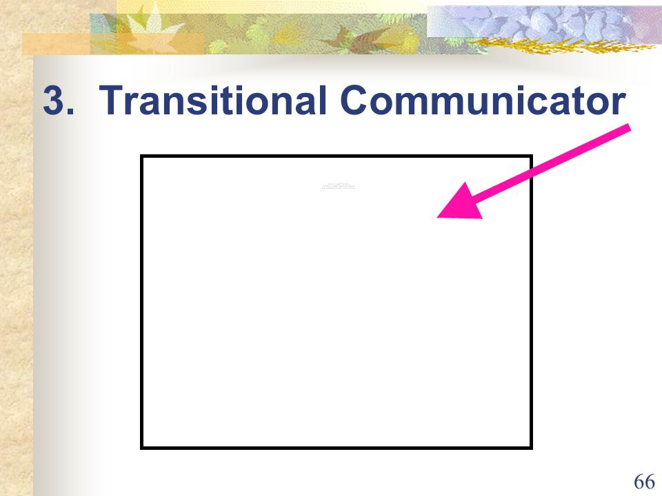 66 3. Transitional Communicator