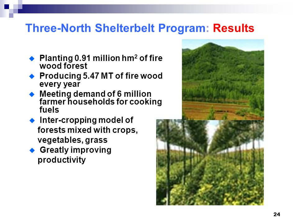 24 Three-North Shelterbelt Program: Results  Planting 0.91 million hm 2 of fire wood forest  Producing 5.47 MT of fire wood every year  Meeting demand of 6 million farmer households for cooking fuels  Inter-cropping model of forests mixed with crops, vegetables, grass  Greatly improving productivity