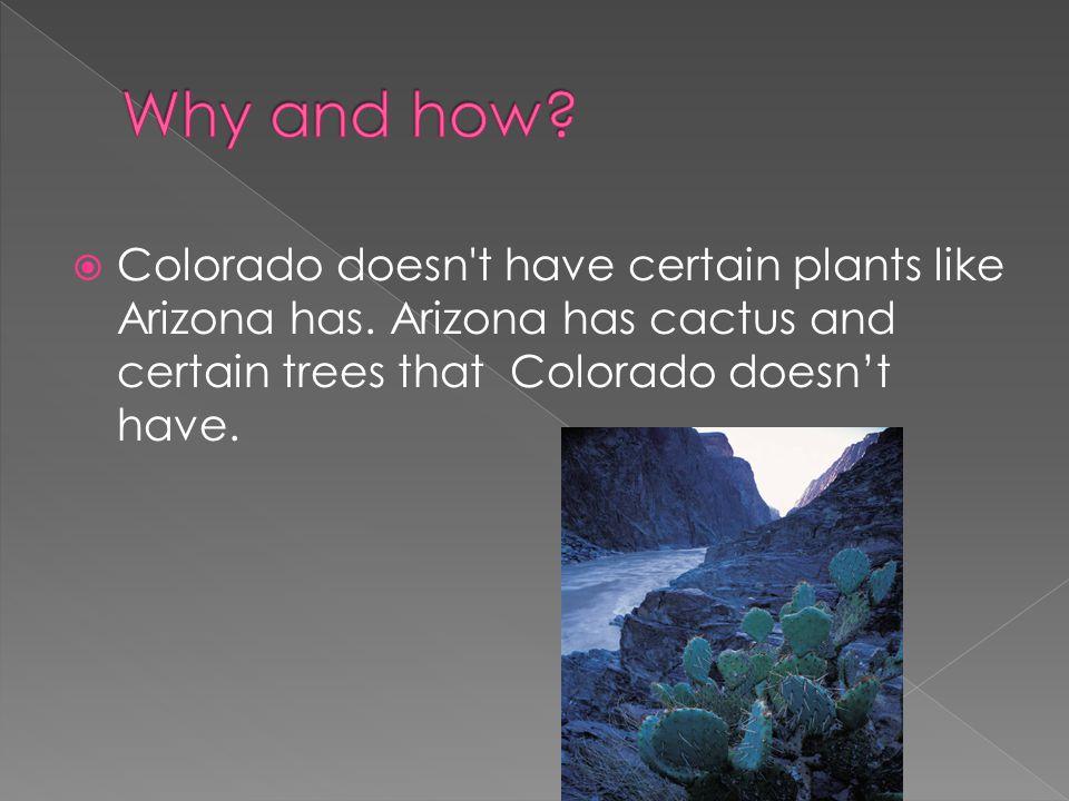  Colorado doesn t have certain plants like Arizona has.
