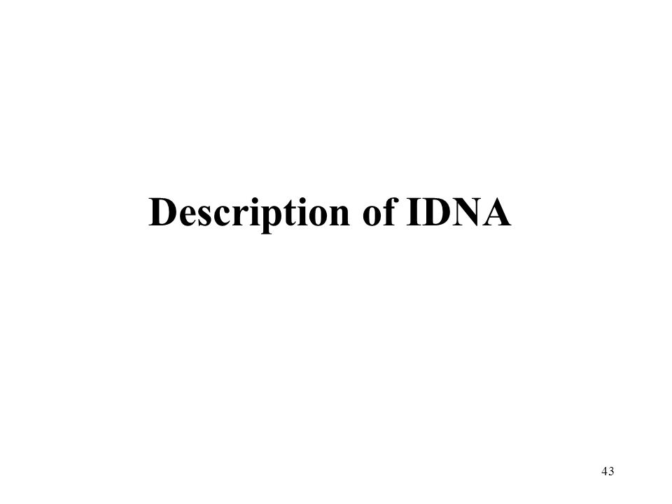 43 Description of IDNA