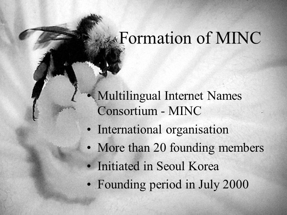 Formation of MINC Multilingual Internet Names Consortium - MINC International organisation More than 20 founding members Initiated in Seoul Korea Founding period in July 2000