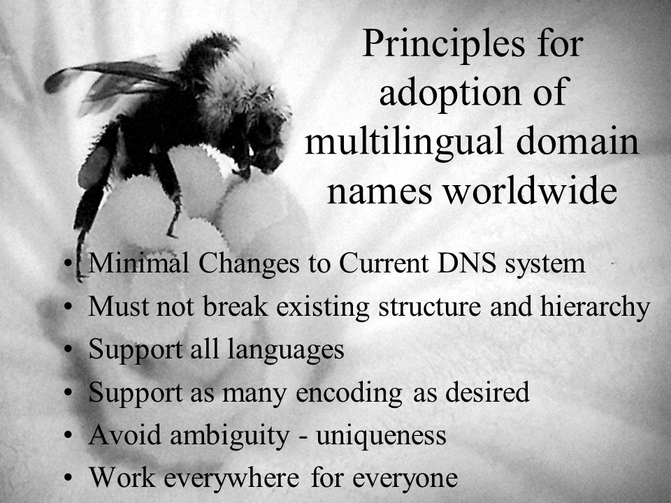 Principles for adoption of multilingual domain names worldwide Minimal Changes to Current DNS system Must not break existing structure and hierarchy Support all languages Support as many encoding as desired Avoid ambiguity - uniqueness Work everywhere for everyone