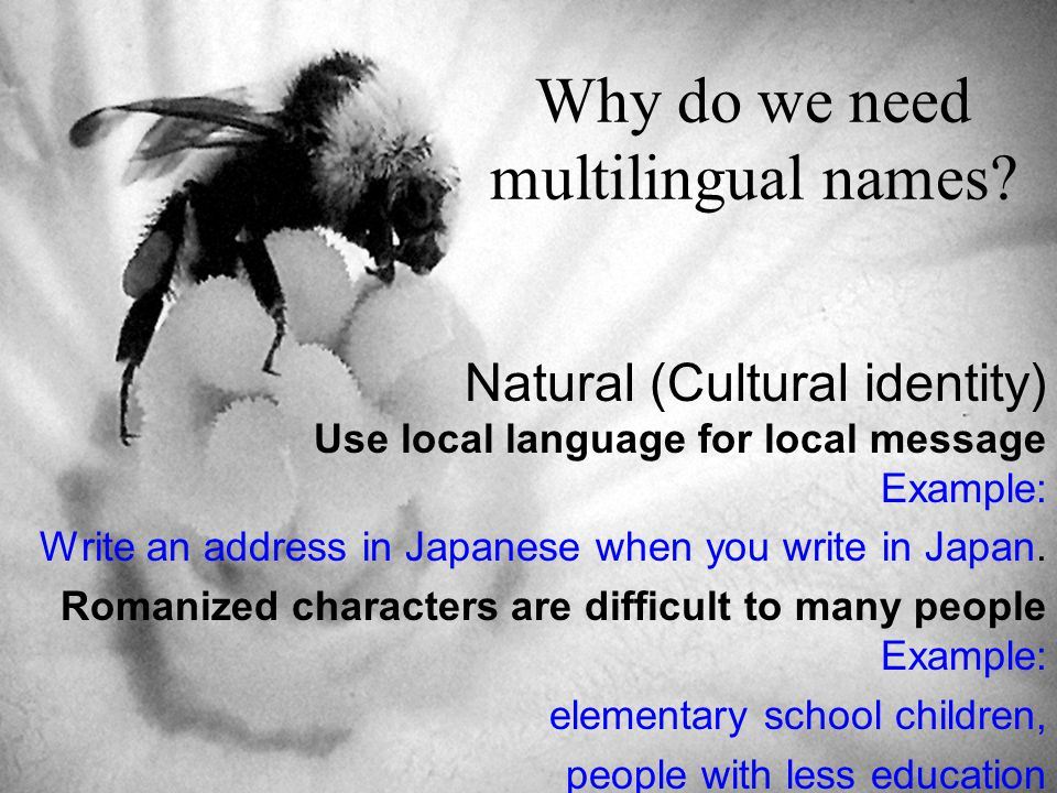 Why do we need multilingual names.