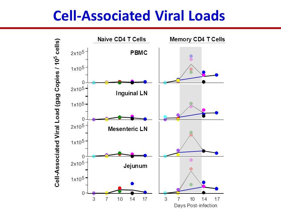 Cell-Associated Viral Loads