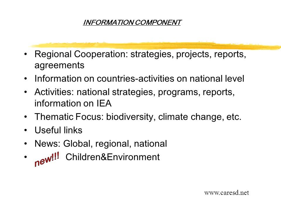INFORMATION COMPONENT Regional Cooperation: strategies, projects, reports, agreements Information on countries-activities on national level Activities: national strategies, programs, reports, information on IEA Thematic Focus: biodiversity, climate change, etc.