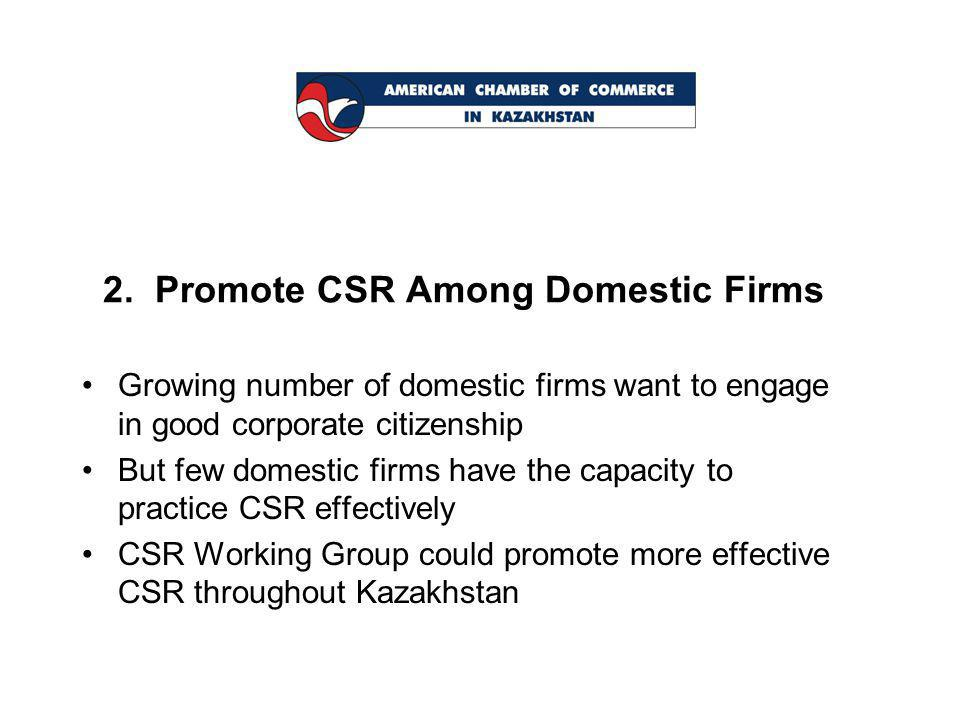 2. Promote CSR Among Domestic Firms Growing number of domestic firms want to engage in good corporate citizenship But few domestic firms have the capa