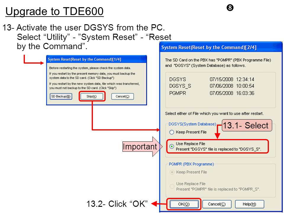 """ Upgrade to TDE600 13- Activate the user DGSYS from the PC. Select ""Utility"" - ""System Reset"" - ""Reset by the Command"". 13.1- Select Important 13.2-"