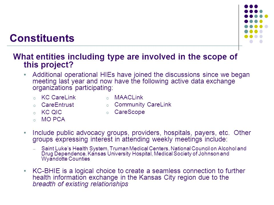 Constituents What entities including type are involved in the scope of this project.